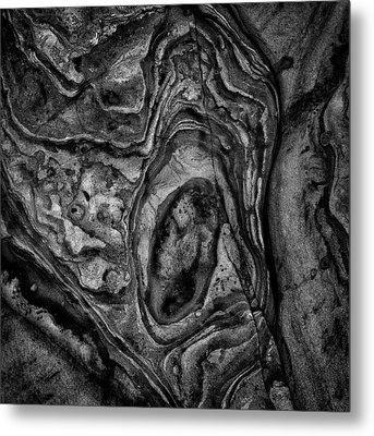 Metal Print featuring the photograph Point Lobos Viii Sq Bw by David Gordon