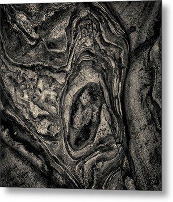 Metal Print featuring the photograph Point Lobos Viii Sq Toned by David Gordon