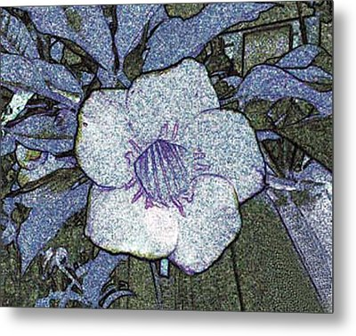 Metal Print featuring the photograph Pointilized Flower by Merton Allen