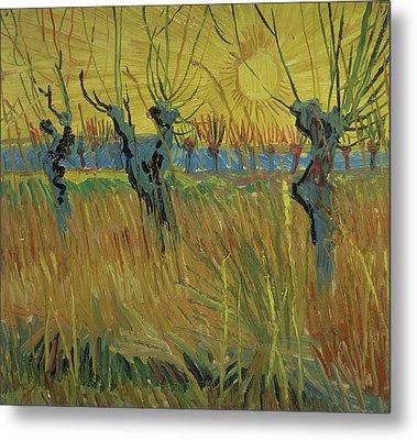 Pollarded Willows And Setting Sun Metal Print