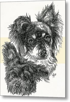 Pomapoo Father And Son Metal Print by Barbara Keith