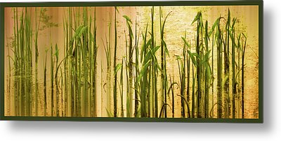 Pond Grass Abstract Panel Metal Print