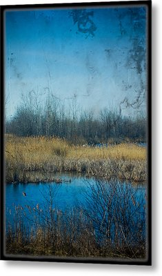 Pond In The Field Metal Print by Michel Filion