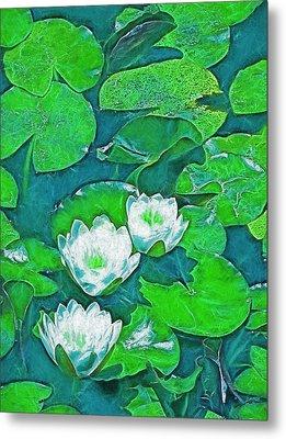 Pond Lily 2 Metal Print by Pamela Cooper