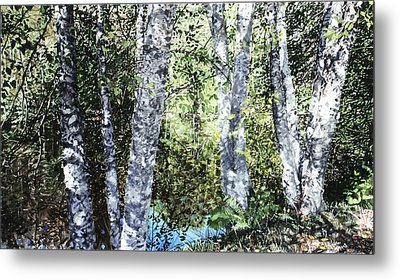 Pond Reflection Metal Print by Perry Woodfin