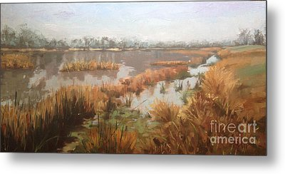 Pondering On A Pond Metal Print