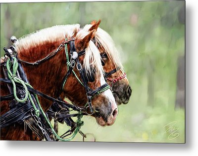 Ponies In Harness Metal Print