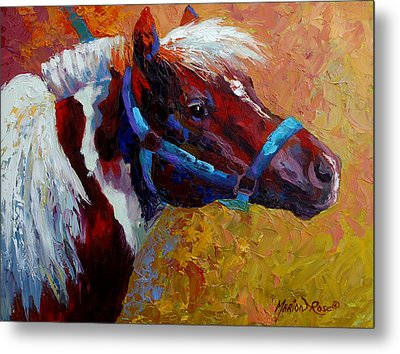 Pony Boy Metal Print by Marion Rose