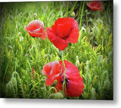 Poppies In Paris Metal Print by Louloua Asgaraly