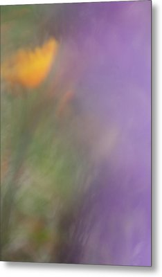 Metal Print featuring the photograph Poppy And Purple Lupine by Roger Mullenhour