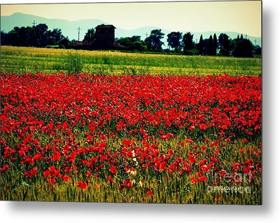 Poppy Field In Tuscany Metal Print