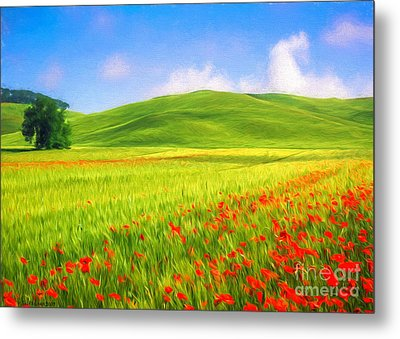 Poppy Field Metal Print by Veikko Suikkanen