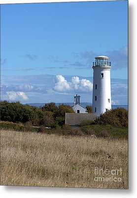 Metal Print featuring the photograph Portland Bird Observatory by Baggieoldboy