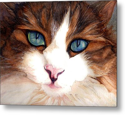 Portrait Of A Cat Metal Print by Janine Riley