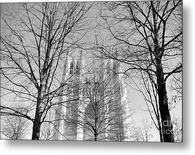 Portrait Of A Cathedral Metal Print