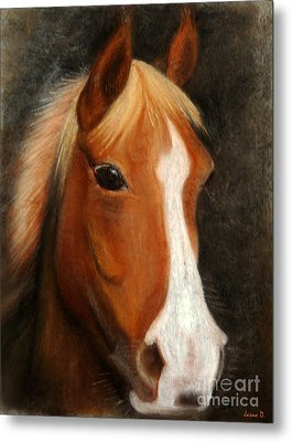 Portrait Of A Horse Metal Print by Jasna Dragun