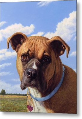 Portrait Of A Sweet Boxer Metal Print by James W Johnson
