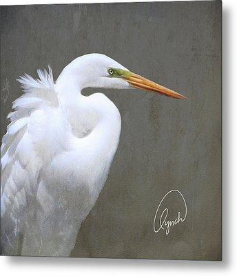 Portrait Of An Egret Signed Metal Print