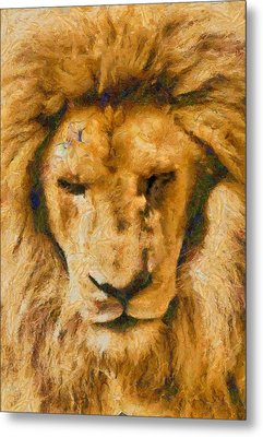 Metal Print featuring the photograph Portrait Of Lion by Scott Carruthers