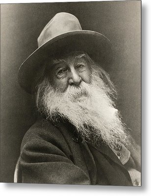 Portrait Of Walt Whitman Metal Print by George Cox