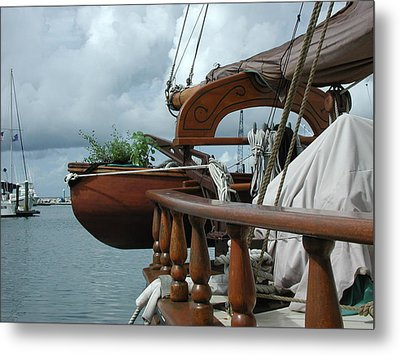 Metal Print featuring the photograph Potted Dory by Nancy Taylor