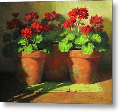 Potted Geraniums Metal Print by Linda Jacobus