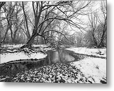 Poudre Black And White Metal Print by James Steele