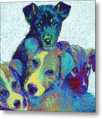 Pound Puppies Metal Print by Jane Schnetlage