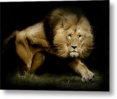 Power Metal Print by Animus  Photography