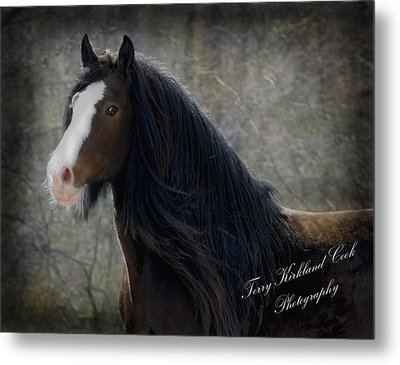 Powerful Paul Metal Print by Terry Kirkland Cook
