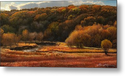 Prairie Autumn Stream No.2 Metal Print by Bruce Morrison