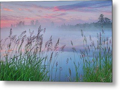 Metal Print featuring the photograph Prairie Pond Before Sunrise by Dan Jurak