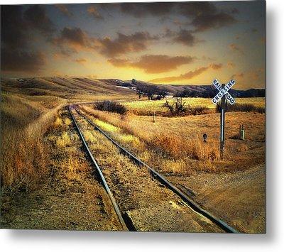 Prairie Tracks Metal Print