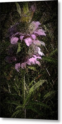 Prairie Weed Flower Metal Print