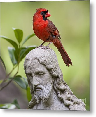 Praise The Lord Metal Print by Bonnie Barry