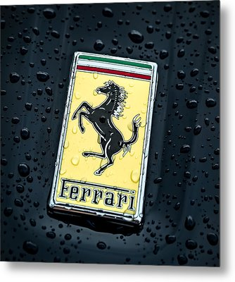 Prancing Stallion Metal Print by Douglas Pittman