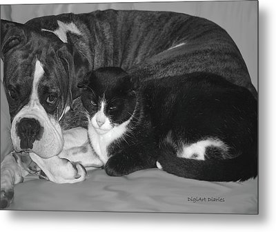 Precious Pals Metal Print by DigiArt Diaries by Vicky B Fuller