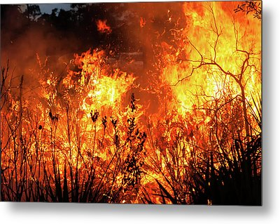 Metal Print featuring the photograph Prescribed Burn by Arthur Dodd