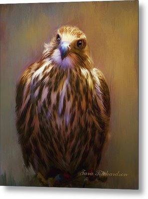Pretty Bird Metal Print by Tara Lee Richardson