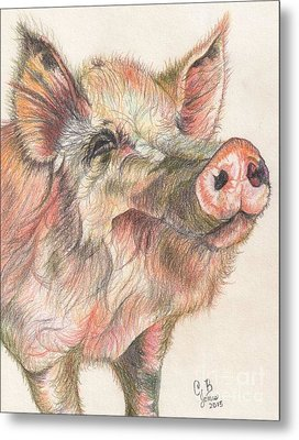 Pretty Imporkant Pig Metal Print by Chris Bajon Jones