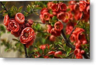 Pretty In Red Metal Print by Cameron Wood