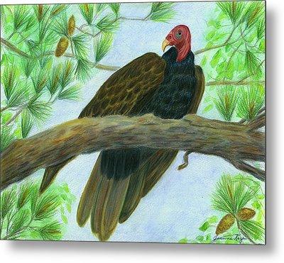 Pretty Redhead Turkey Vulture Metal Print