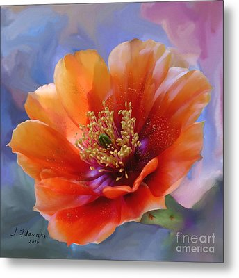 Prickly Pear Bloom Metal Print by Judy Filarecki