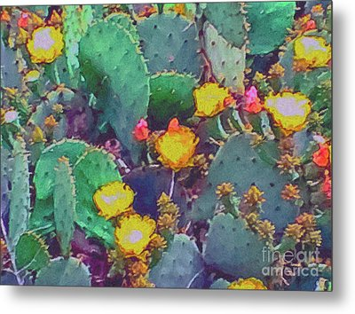 Prickly Pear Cactus 2 Metal Print by Methune Hively