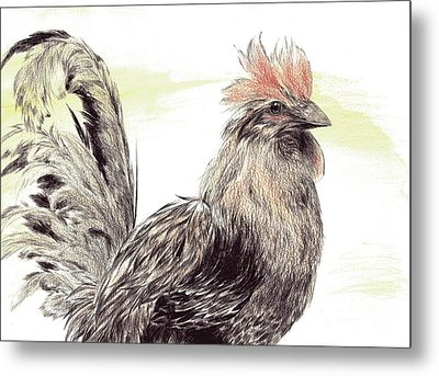 Pride Of A Rooster Metal Print
