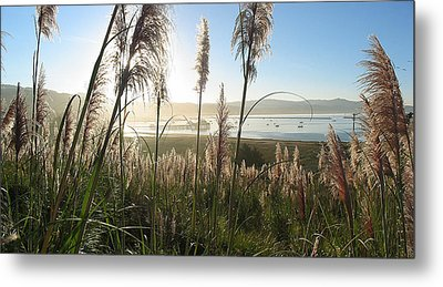 Princeton Harbor. California Metal Print by Bob Bennett