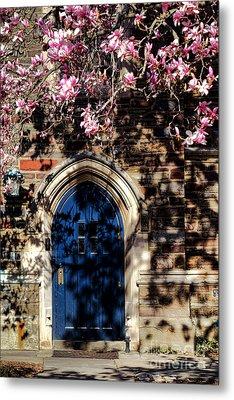 Princeton University Door And Magnolia Metal Print by Olivier Le Queinec