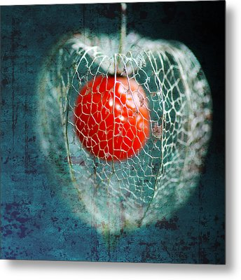 Prison Of Love Metal Print by Philippe Sainte-Laudy