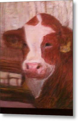 Prized Bull Metal Print by Richalyn Marquez