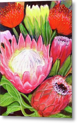 Protea Flowers #240 Metal Print by Donald k Hall
